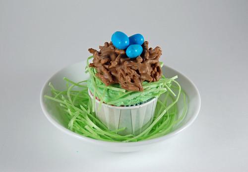Spring Cupcakes 01