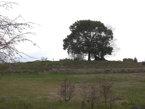 纒向石塚古墳/Makimuku-Ishizuka Burial Mound