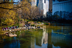The Pond on a Spring Day (Tattooed JJ) Tags: nyc ny pentax centralpark manhattan april jjp thepond apriljjpnynycmanhattanpentax