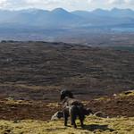 Dougal agus an Cuiltheann thumbnail