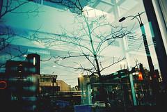 (Džesika Devic) Tags: city trees toronto film buildings chinatown canonae1 windowreflections