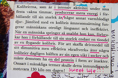 Text details (Copyright Hanna Andersson])