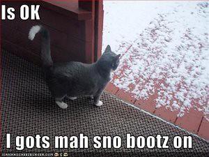 snowbootson