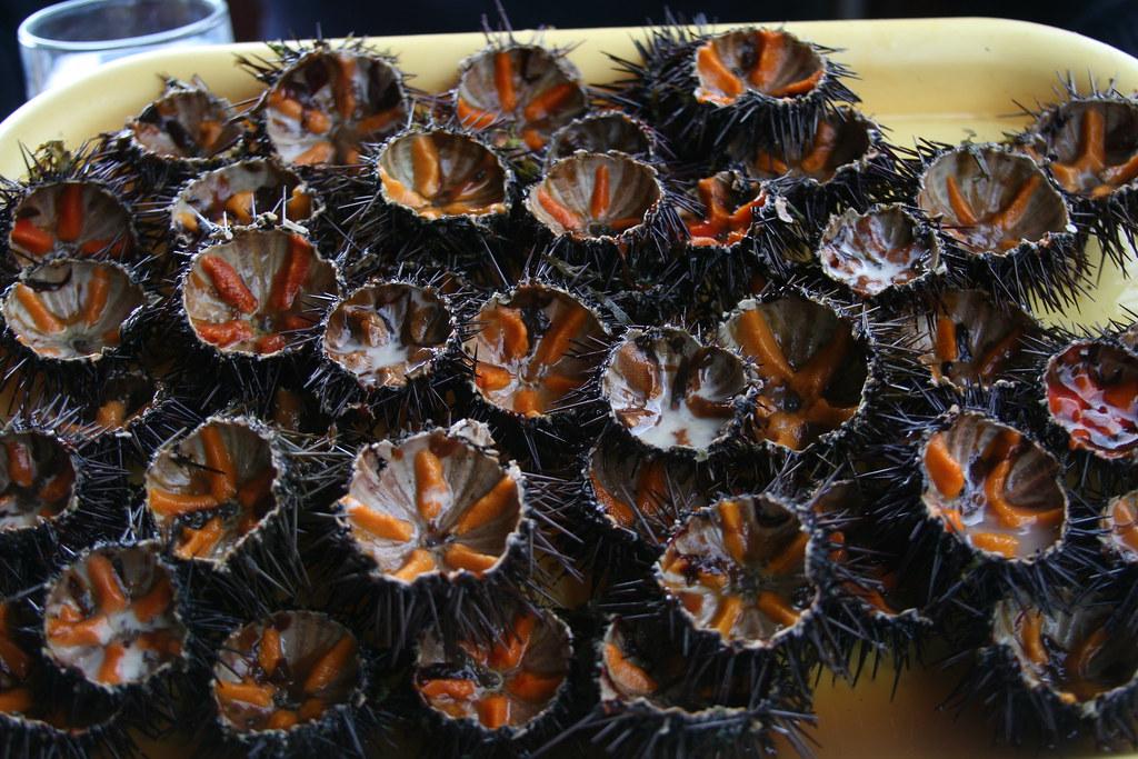 Ricci di Mare (Sea Urchins)