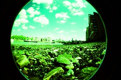 70450024 (Hladonik) Tags: london lomography cross fisheye
