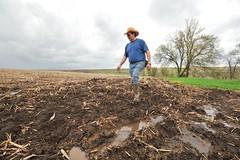 Planting Delays
