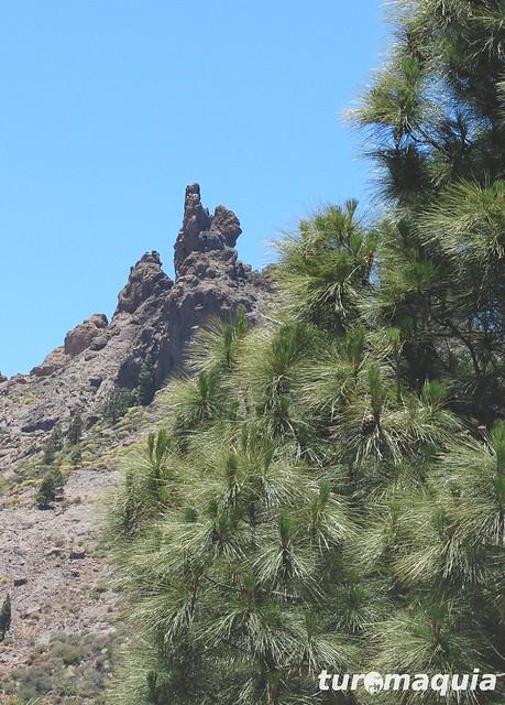 Caminata Roque Nublo