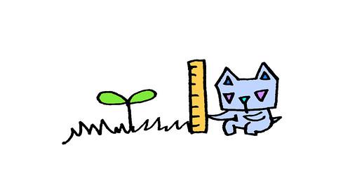 双葉を測る三角うさぎ2