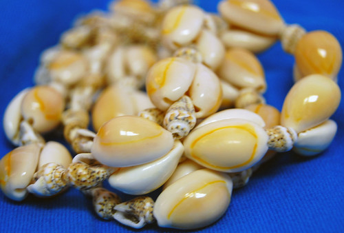 Hawaiian Shell Lei