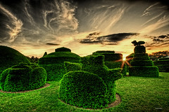 magic garden (all the pix) Tags: sky sculpture art nature beautiful beauty grass garden evening bush artistic dusk magic trimmed horizon greenery trim magical bushes daybreak sculpted grassy hedges horizons coth goldenheartaward