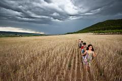En fila india, ajenos a la tormenta (Palo) Tags: sky india storm valencia les la lluvia cereal
