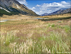 daydream (Daniel Murray (southnz)) Tags: newzealand summer mountain grass station creek river landscape high scenery country canyon valley nz southisland ahuriri southnz