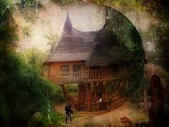 the witchhouse (Eddi van W.) Tags: woman dove magic witchhouse graphicmaster