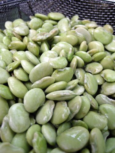 king bean.