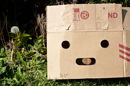 Happy Box and Dandelion