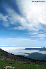 Above the Clouds (Moustapha B) Tags: travel sky mountain green clouds eos hope freedom colorful heaven iran happiness 7d ایران 90 18200 بهار سبز بهشت مصطفي خاطره 2011 کوه ابر آسمان آبی سبزه moustapha سفید mazichal رنگارنگ مازيچال