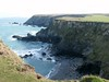 Seals on the Cornish coast (rdavo58) Tags: sea beach sand rocks cliffs hedge seals godrevy platinumphoto citrit