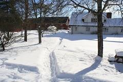 Vinterferie i Høland -09 025
