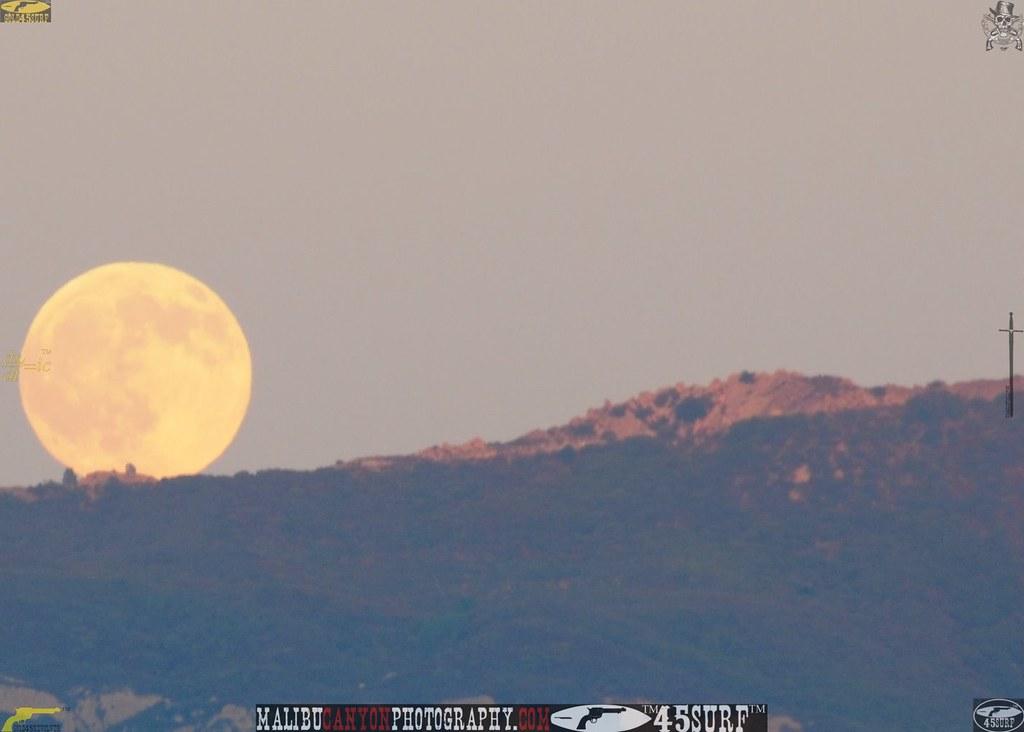 malibu_moon 207.984354