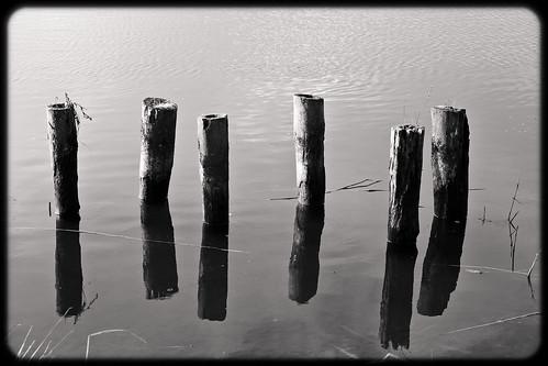 umgeben vom Wasser