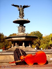 Bethesda Fountain and Double Bass (The SW Eden ( )) Tags: park new york city nyc newyorkcity sky ny man black tree bird fountain bag this niceshot sweden bass manhattan pigeon central double sw eden bethesda share doubleba