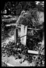unwritten epitaph (B.S. Wise) Tags: bw art abandoned grass car fence photography photo decay urbandecay lot dirty boundaries bradwise bradswise artisticphotos blackandwhitebw bwdreams whiteandblackphotography filmisnotdead chaosinthesoul incoloro bswise veotodoenblancoynegro trashbitreloaded whatyouseeiswhatyouare blackwhitephotoszapraszamchallengeofthemonth adumbrationsofthesublunaryethos