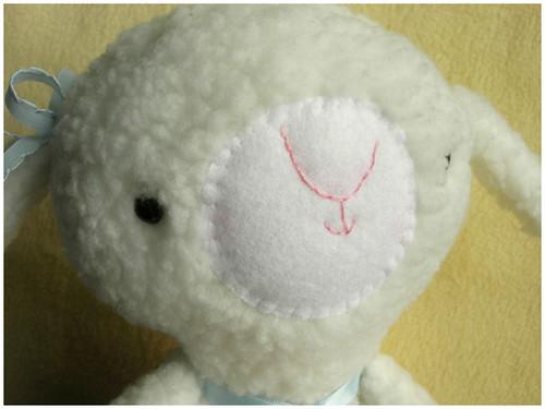 lamb close up