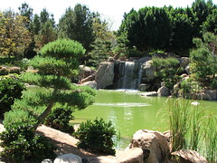 Waterfall in the Japanese Friendship Garden in Phoenix, Arizona