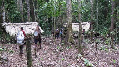 through camp bonobo_31march
