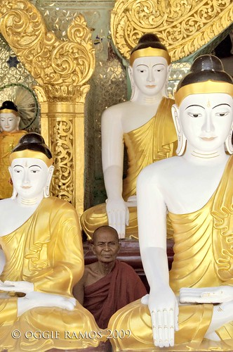 shwedagon buddhas and monk