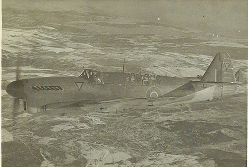 Warbird picture - Firefly