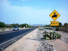 Rio Verde, AZ (jomaot) Tags: road street travel arizona cactus usa golf reisen desert strasse schild roadsign scottsdale cart wste rioverde fountainhills