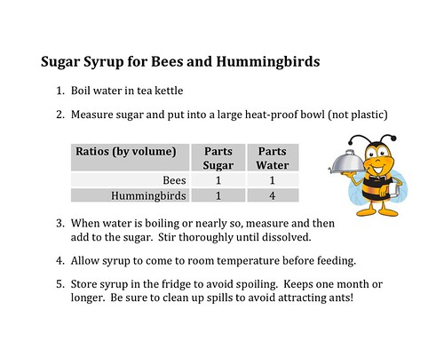 Sugar Syrup For Bees and Hummingbirds
