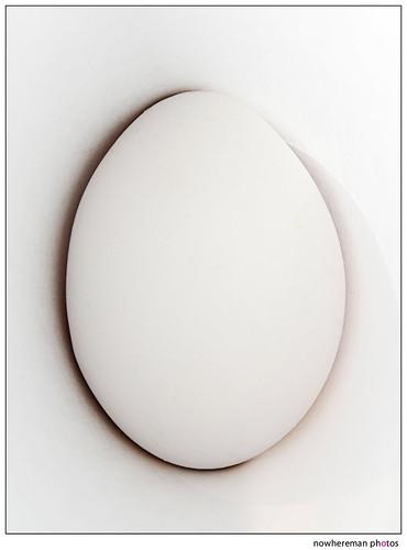 Egg, Day 3