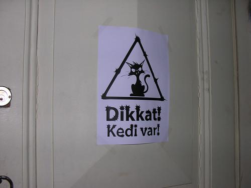 Vigyázat, macskánk van!