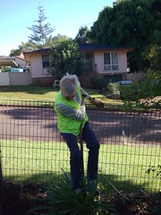 Helen practices pole-dancing . . . (GreenGymPMQ) Tags: portmacquarie greengym