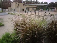 صورة0039 (lateefkuwait) Tags: في تاريخ المزرعة 452009