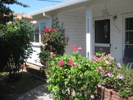 Front door with roses