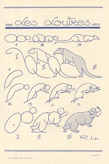 les animaux 63