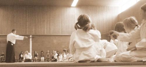 Aikido Aid 2009 par vous