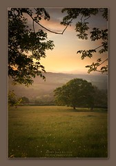 Dream State (Sean Bolton (no longer active)) Tags: sunset orange mountain mountains tree grass wales hill cymru shades hills foliage smoky tones chepstow dandilion seanbolton ffotocymrucouk
