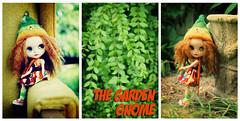 The Garden Gnome - 5/365