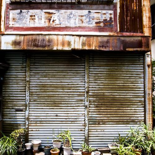 Storefront No, Aloe Yes
