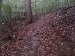 15 - Creekside Trail