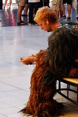 Wookie Money