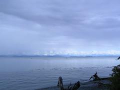 Whale maybe (maureenlafleche) Tags: malcolmisland berepoint