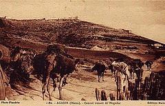 Agadir Vintage Postcard - Camel Caravan circa 1930s (ronramstew) Tags: 1930s agadir morocco maroc caravan marruecos camels essaouira marokko sismo seisme tremblement camelcaravan tremblementdeterre
