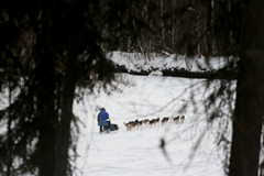 musher (Beverly Demientieff) Tags: chenariver northpole musherdogmushingalaska alaskaoutdoorsport