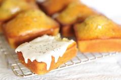 Lemon Poppyseed Yoghurt Mini-Loaf Cakes - Icing and Nom-ing Simultaneously