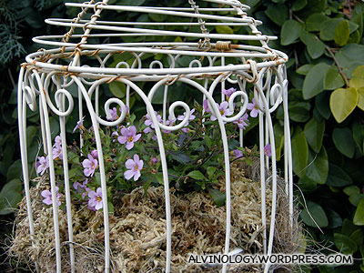 Bird cage with flowers inside